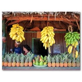 Αφίσα (φρούτα, vegrtables, μπανάνες, ανανάς)